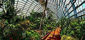 640px-Conservatory_wide_angle_jon_petersen